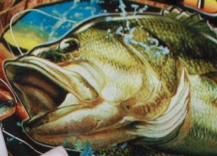 tshirt pêche cado