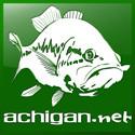 pêche truite carnassier mer