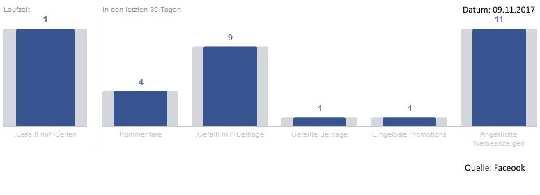 Monatliche Aktivität eines deutschen Facebook-Nutzers