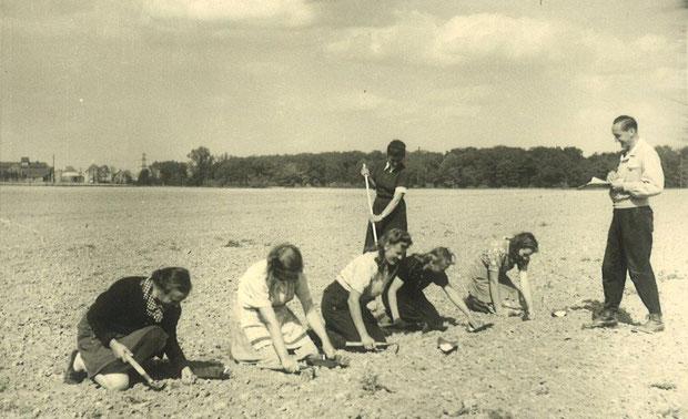 Feldarbeit in den ersten Nachkriegsjahren im neu gegründeten Sortenamt in Rethmar