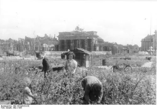 Sogar vor dem Brandenburger Tor wurde in der Nachkriegszeit Gemüse angebaut. Für Hannover war leider kein vergleichbares Bild zu finden.