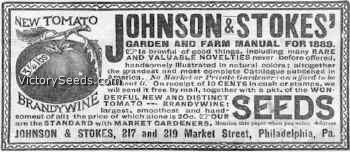 Werbeanzeige aus dem Jahr 1889