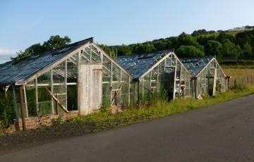 Verlassene Gewächshäuser erinnern noch an die blühenden Zeiten des schottischen Tomatenanbaus