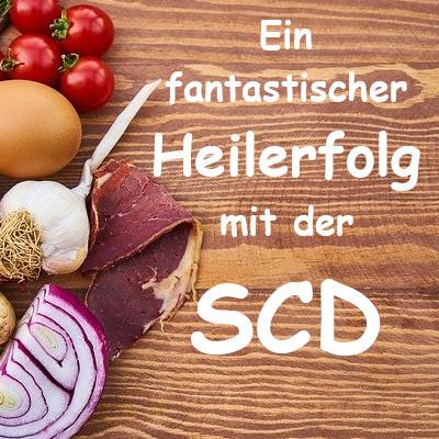 Reizdarm-Erfolgsgeschichte: Den gereizten Darm geheilt mit der Speziellen Kohlenhydratdiät SCD!