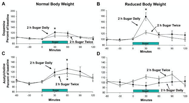 Abb4: Zucker beeinflusst die Freisetzung des Neurotransmitters Acetylcholin.