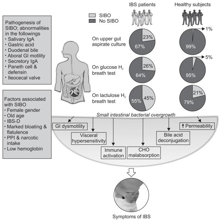 Abb3: Prävalenz der Dünndarmfehlbesiedlung beim Reizdarmsyndrom nach verschiedenen Diagnoseverfahren. Die Prävalenz übersteigt jene innerhalb der Kontrollgruppen jeweils um ein Vielfaches. (Entnommen aus Ghoshal et al.,2017)