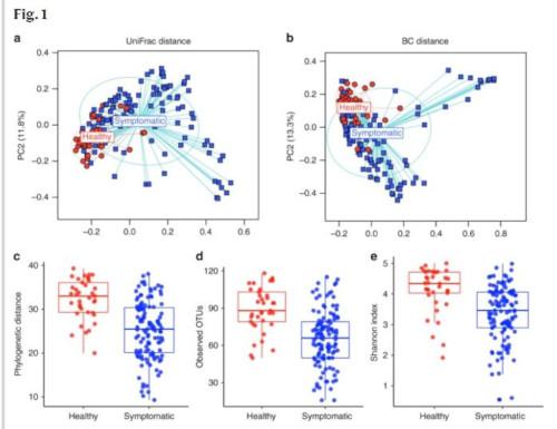 Grafische Darstellung des neuen Konzepts der Dünndarmfehlbesiedlung. Beispiele: Korrelation von verminderter Biodiversität und Symptomen aber keine Korrelation von quantitativer Konzentration (mikrobielle Last) im Dünndarm.