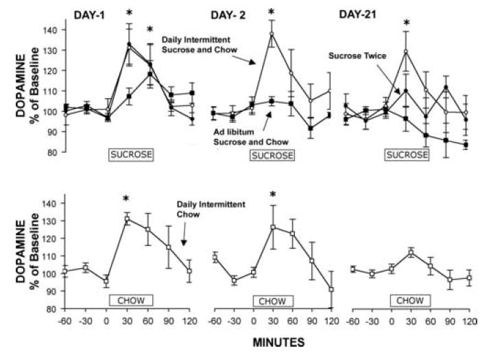 Abb1: Zucker beeinflusst die Anbindung des Neurotransmitters Dopamin typspezifisch an seine Rezeptoren.