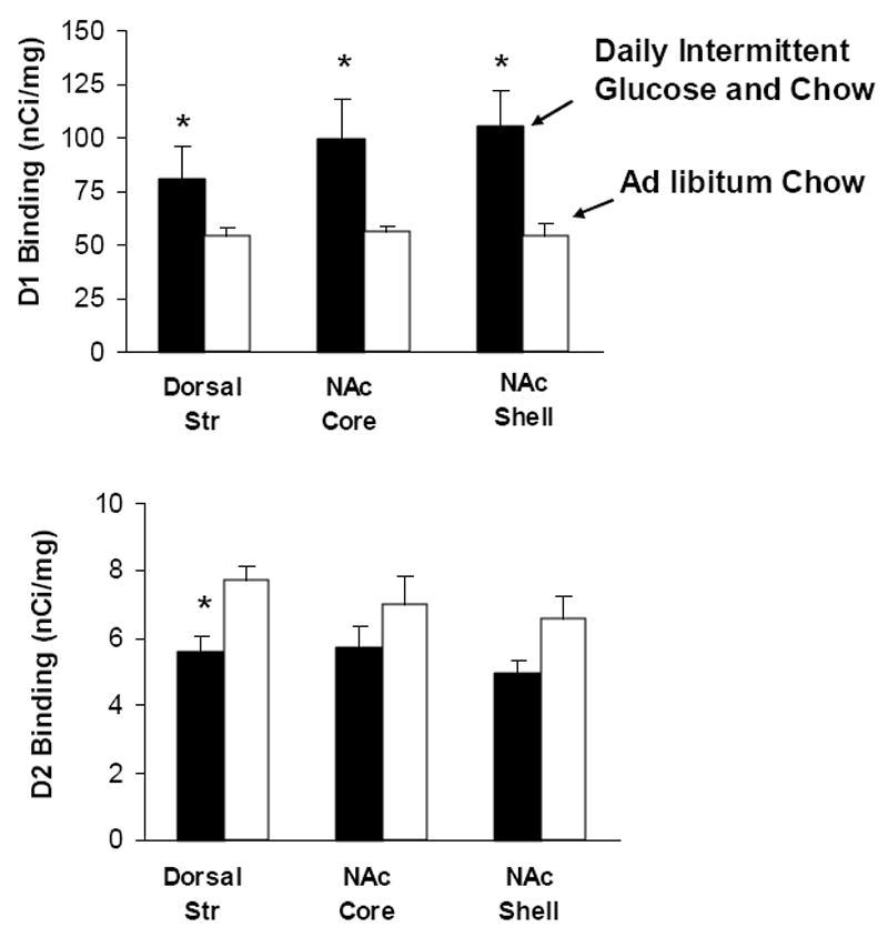 Abb2: Zucker bewirkt eine signifikant stärkere Freisetzung des Neurotransmitters Dopamin gegenüber der arttypischen Kost.