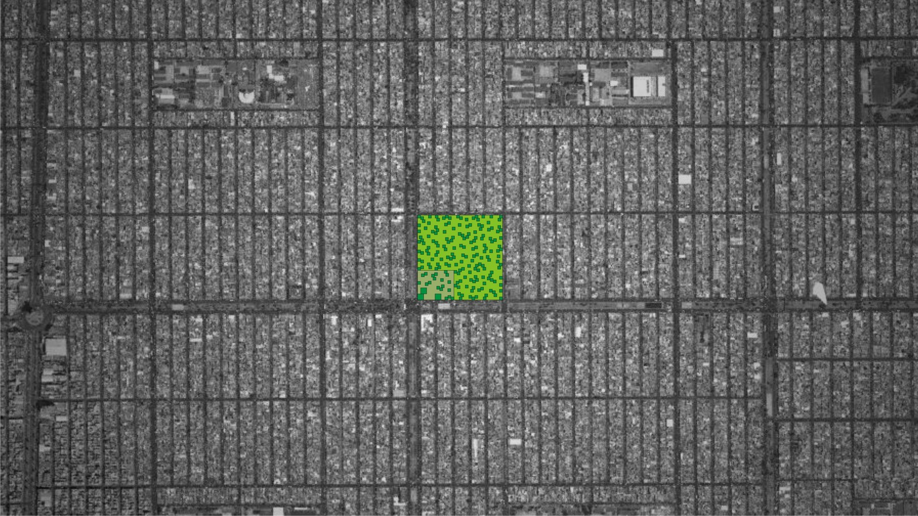 Visualisation OAS1S™: Isolated green oasis in a concrete desert, where nature and people live in harmony.