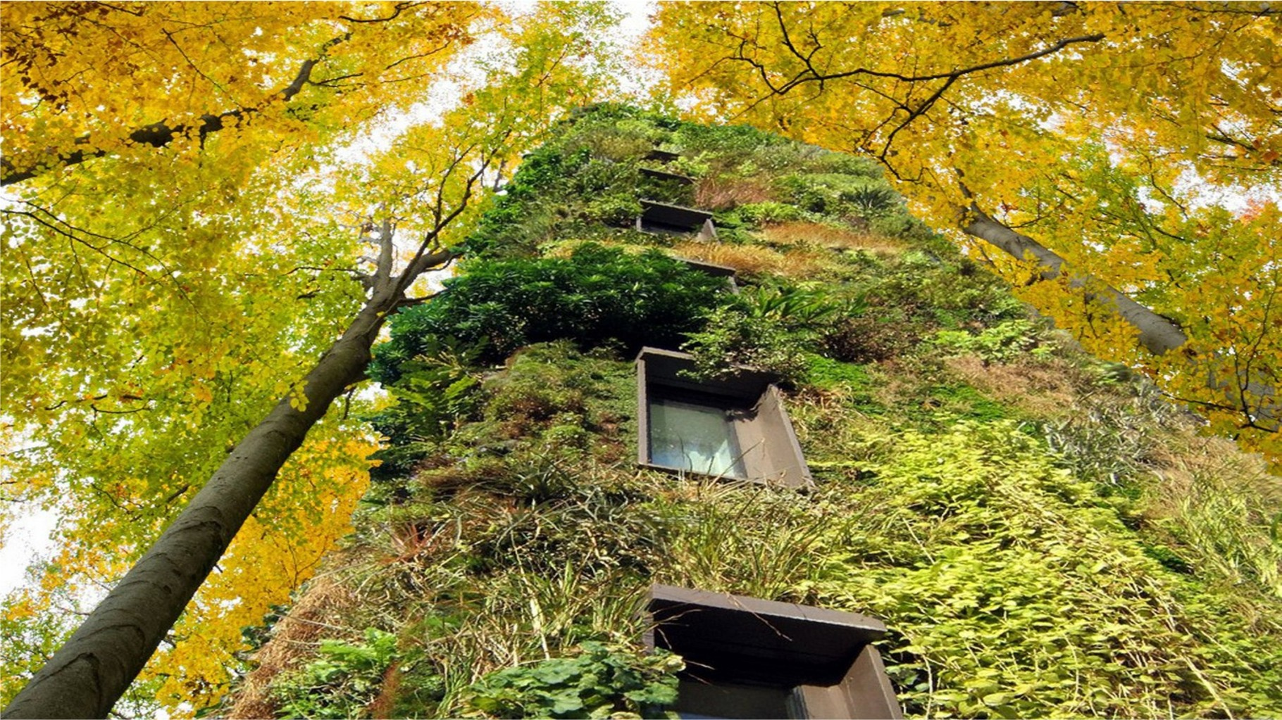 "Visual OAS1S™: ""Treescrapers"" with spectacular vegetation facades."