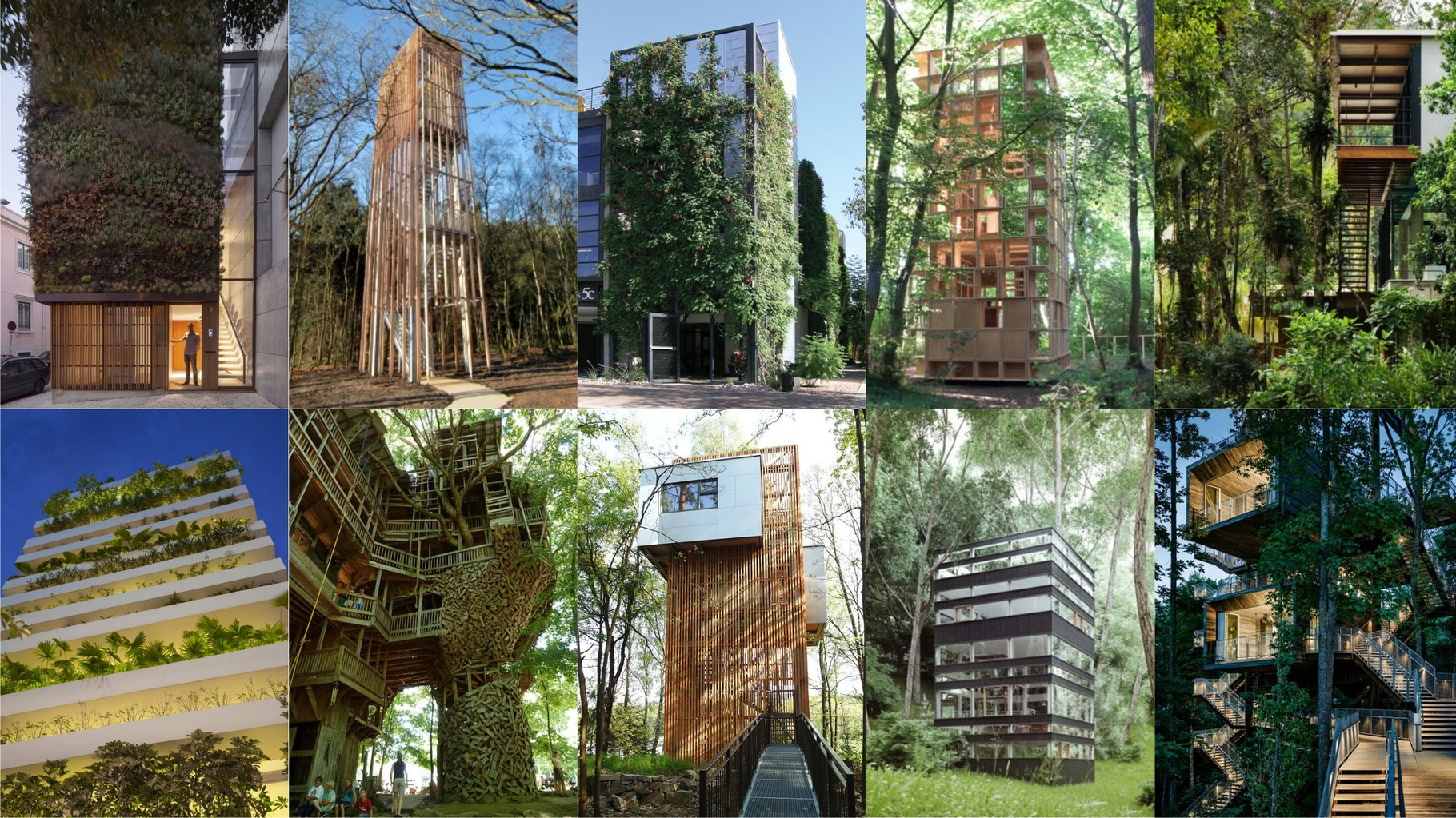 Visual OAS1S™: Attractive tree-like structures with basic and classic design.