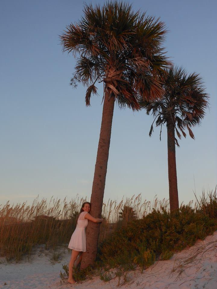 eine Palme umarmen...geht in Florida sehr gut! Palmen überall!!
