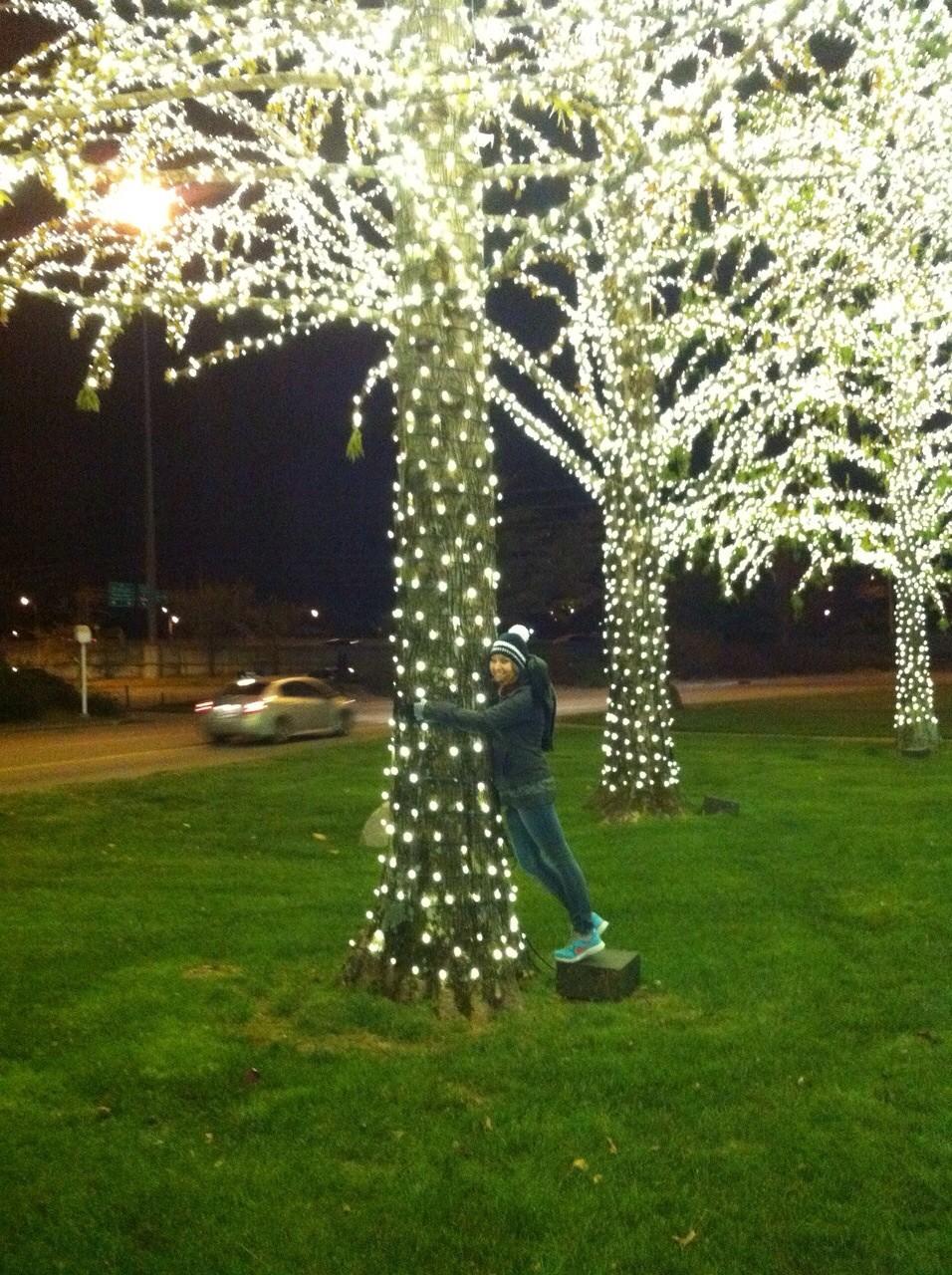 Einen Lichterbaum umarmen