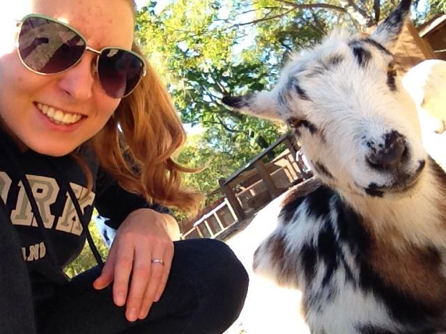 Selfie mit einer Ziege