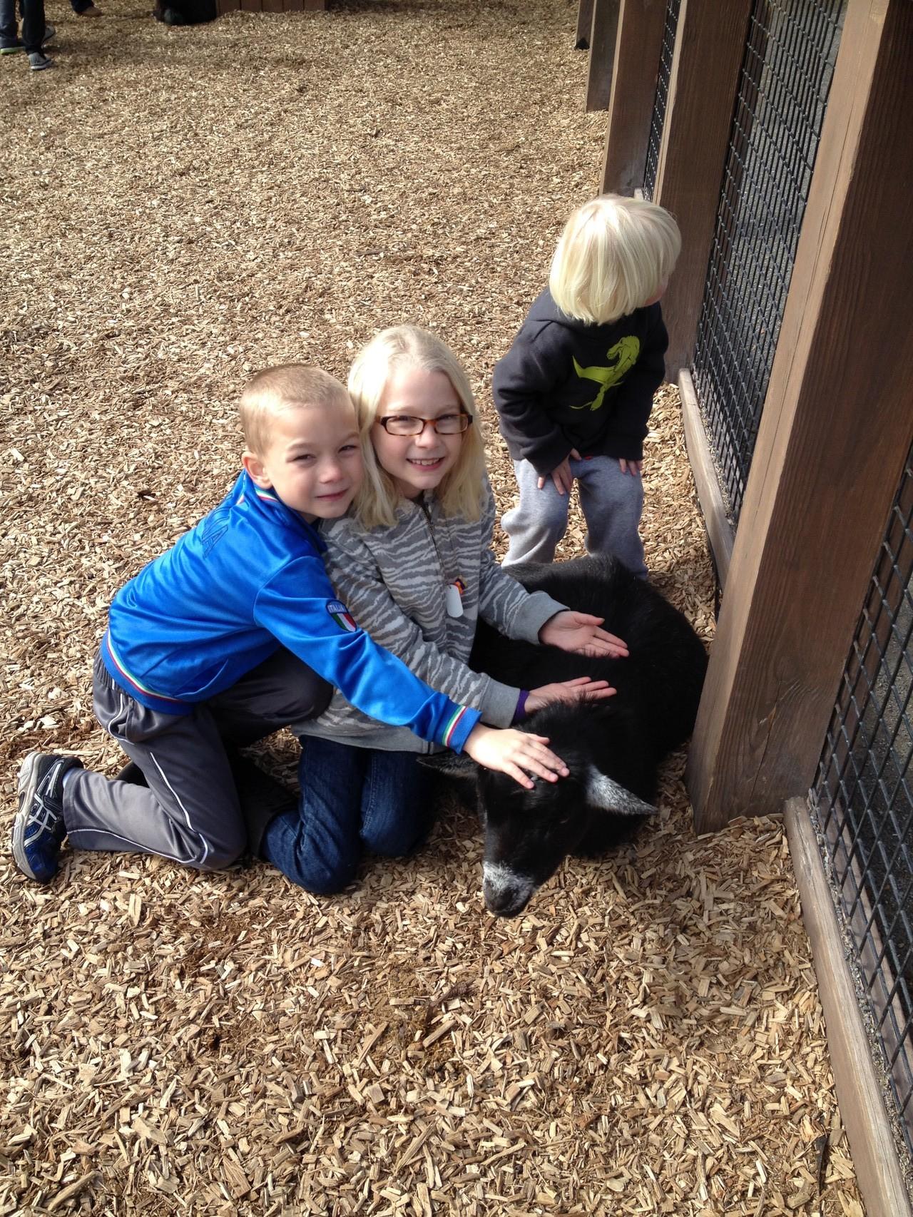 zusammen im Zoo