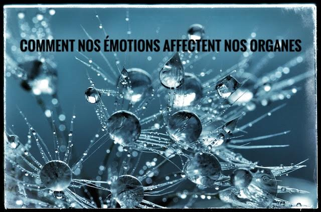 émotions,organes,eau