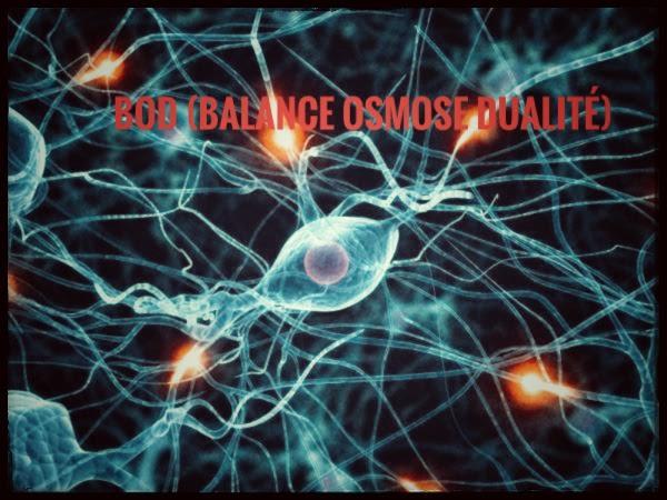 cerveau,neurones,schémas inconscients,mémoires cellulaires,adn,ADN850,mémoires karmiques,mémoires familiales,mécanismes robotiques,programmations mensongères,égrégores,Joel Ducatillon,encodeurs,psychologie ésotérique,schémas mentaux,mental,robotique ,