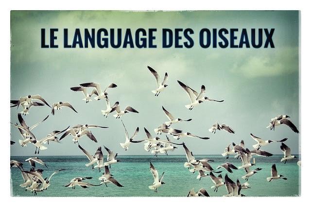 language des oiseaux