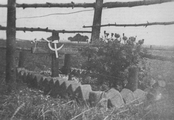 Georgian grave at Texel.