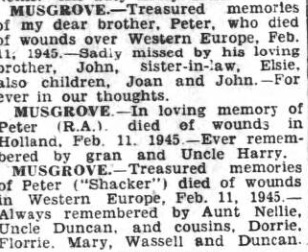Hartlepool Northern Daily Mail 11-2-1946
