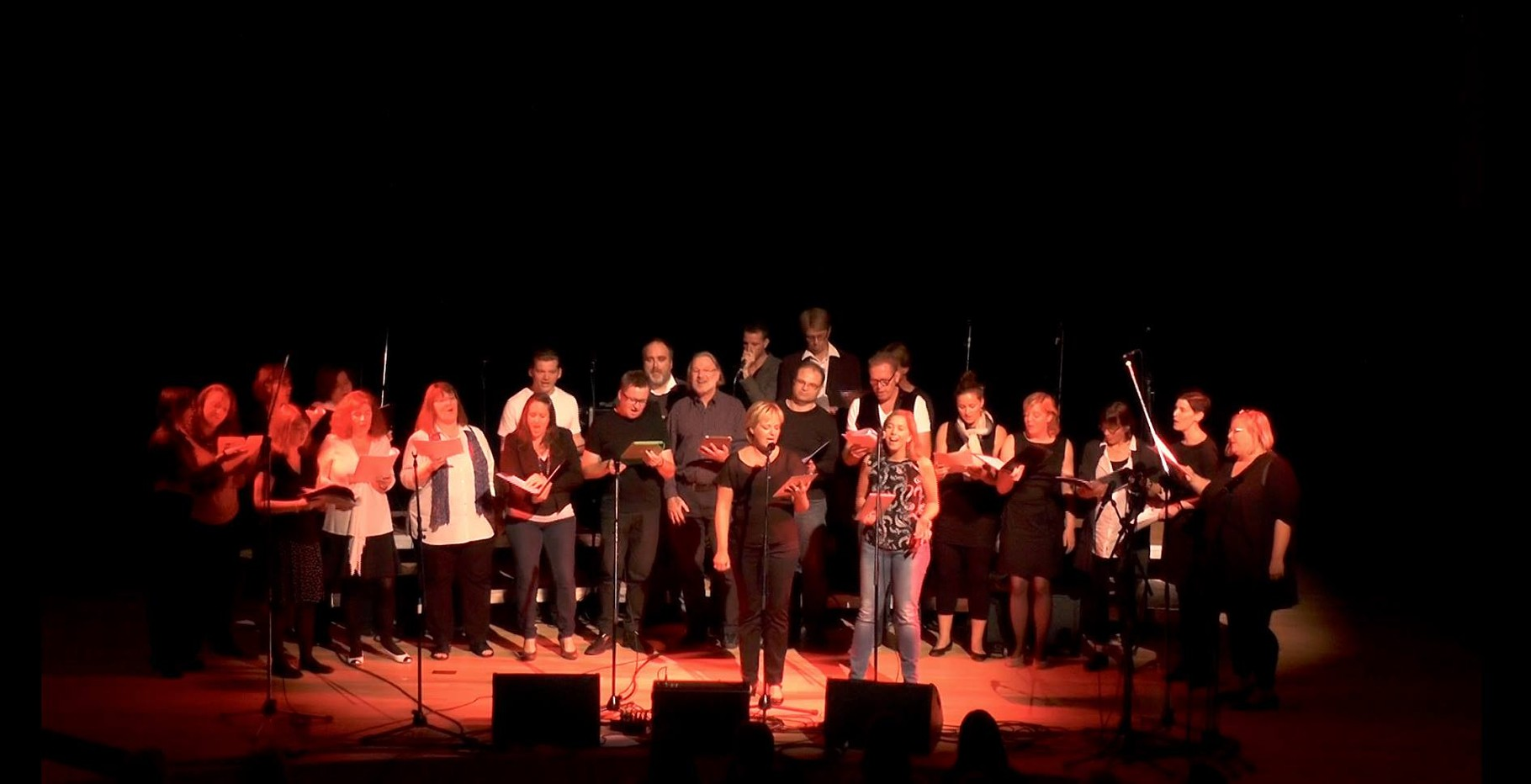 Bei den Single Singers, Acappellica Hamburg 2014.