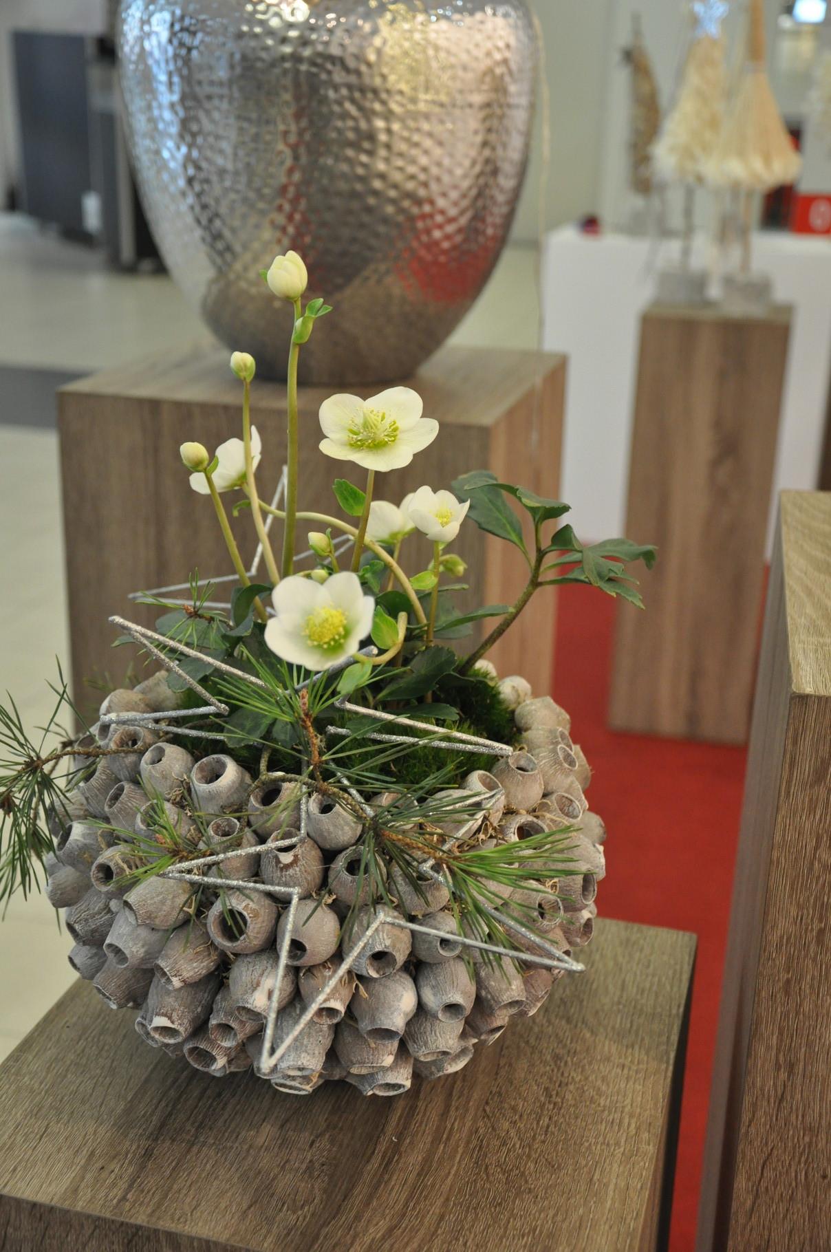 Margarete Hallerberg wooden fruit and heleborus