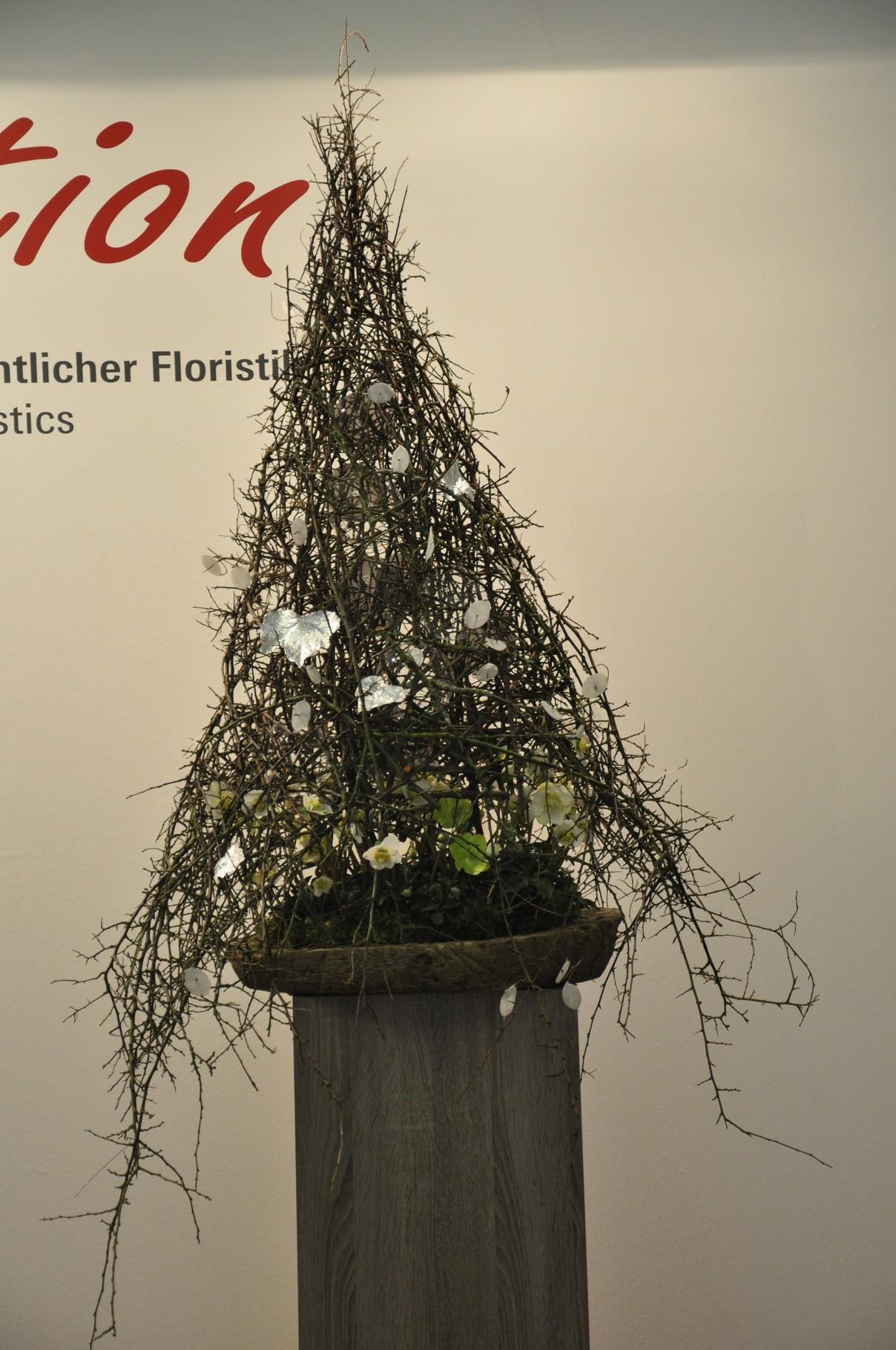 Antje Steinkamp prunus spinosa, helleborus
