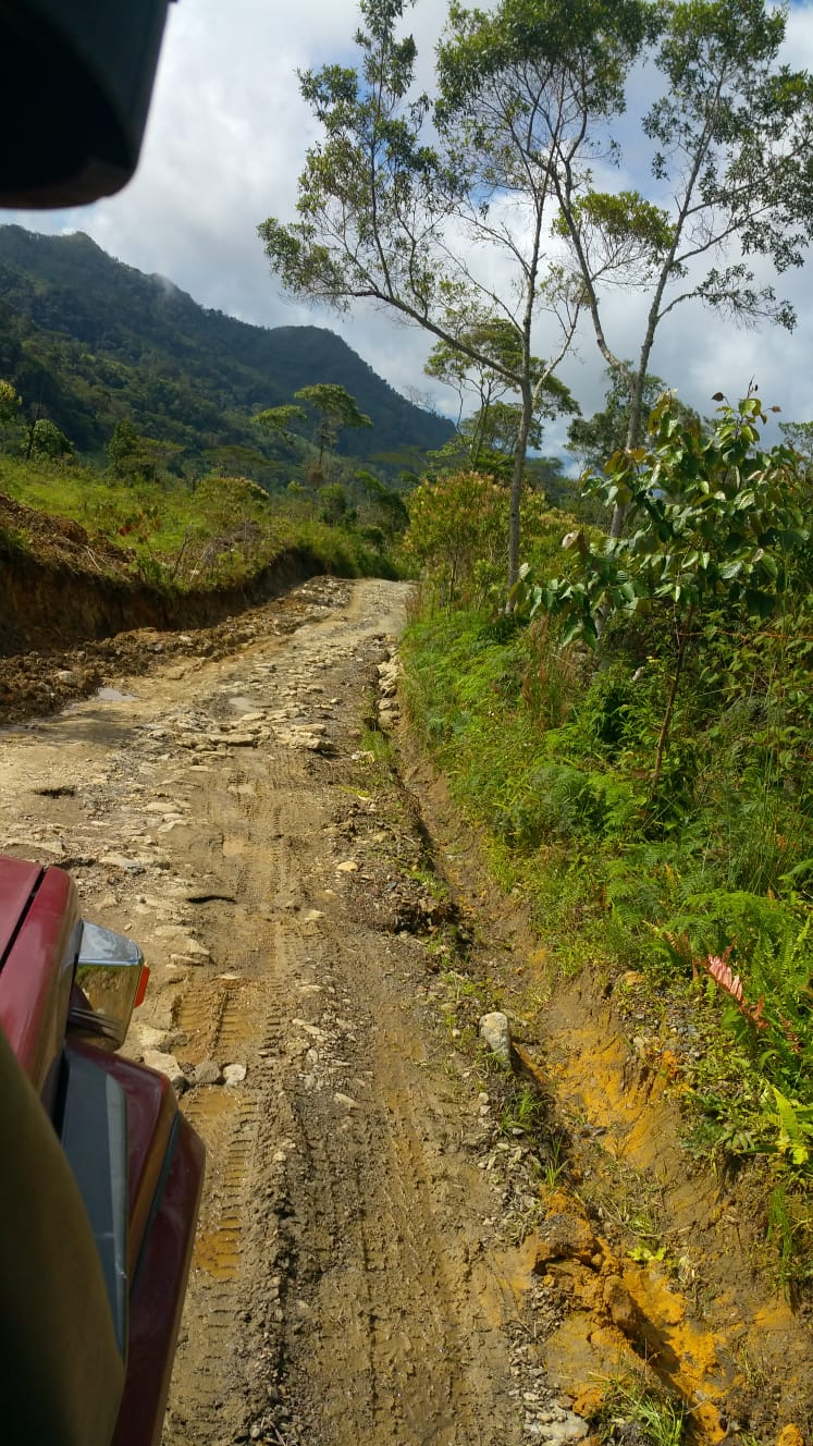Road to the mining area
