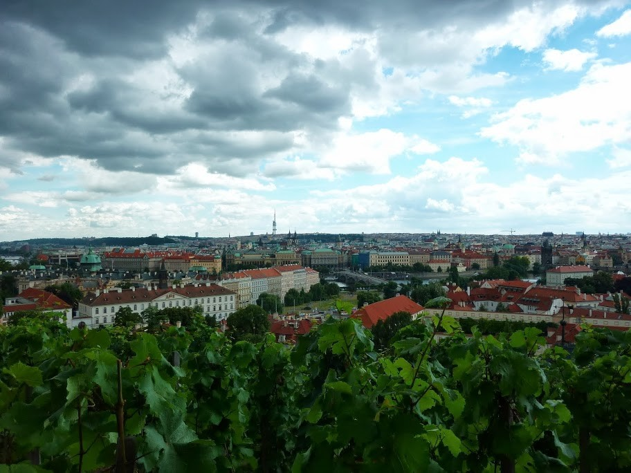 Vignes de Prague