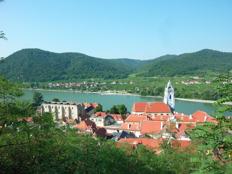 Dürnstein, vignoble de la Wachau