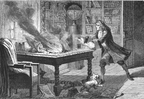Newton et son four