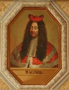 Pierre Magnol