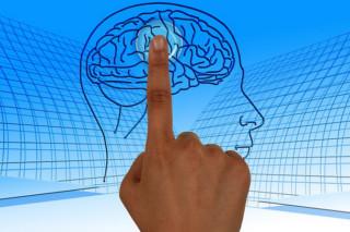 脳を活性化させる方法