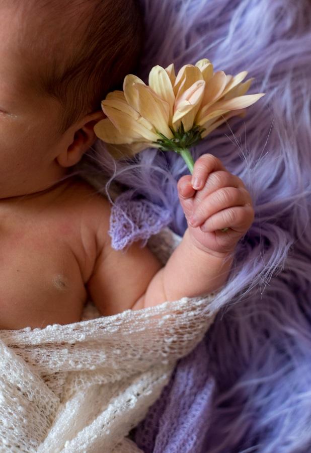 Neugeborenenfotoshooting Mädchen Hand mit Blume