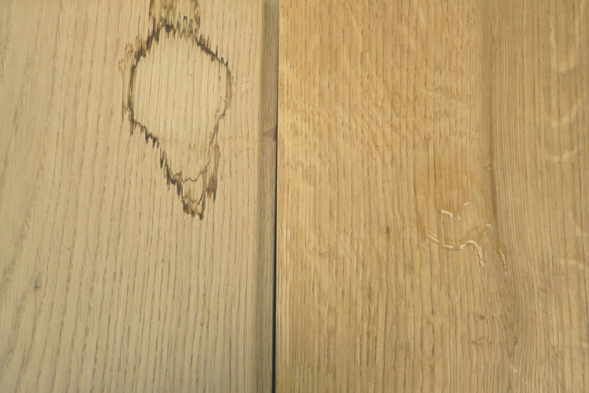 Vorher: Das unbehandelte Holz (links) sowie der hartwachsgeölte Stab (rechts) nach 14-tägiger partieller Wässerung