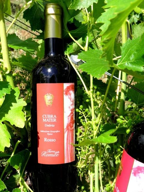 Umbria Rosso IGT