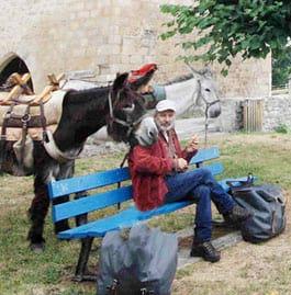 randonnée avec un âne limousin