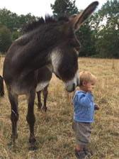 vacances avec enfants à la ferme