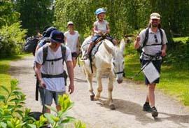 rando âne dans le parc naturel de millevaches