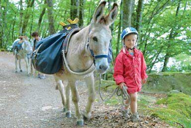 randonnée avec un âne et en famille / photo : C. Schwartz
