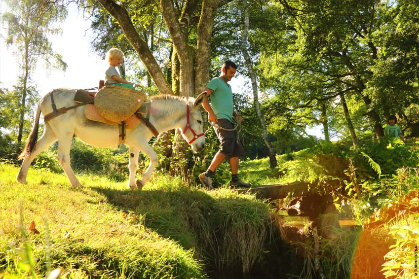 yurt, cottage, gypsy-caravan and donkey-trekking in France