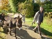 balade avec âne