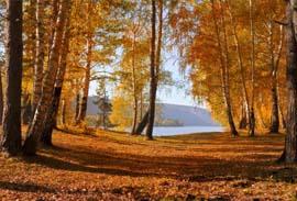 L'automne à Vassivière : une pause pour se retrouver