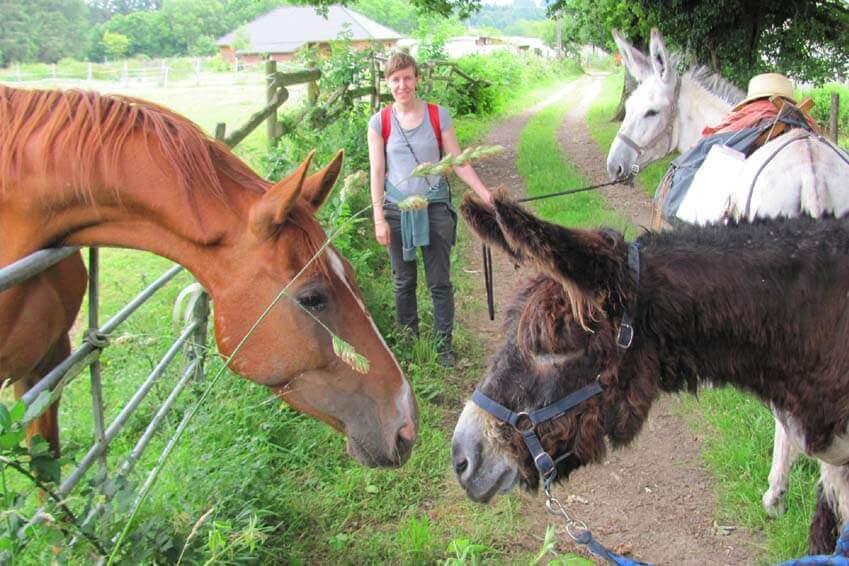 randonner avec un âne en Limousin