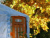 weekend in a yurt