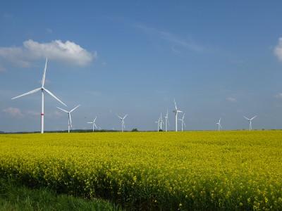 Windprojekt N-W