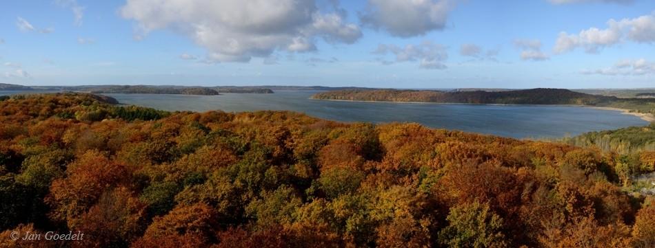 Herbstlicher Wald auf Rügen, Mecklenburg-Vorpommern