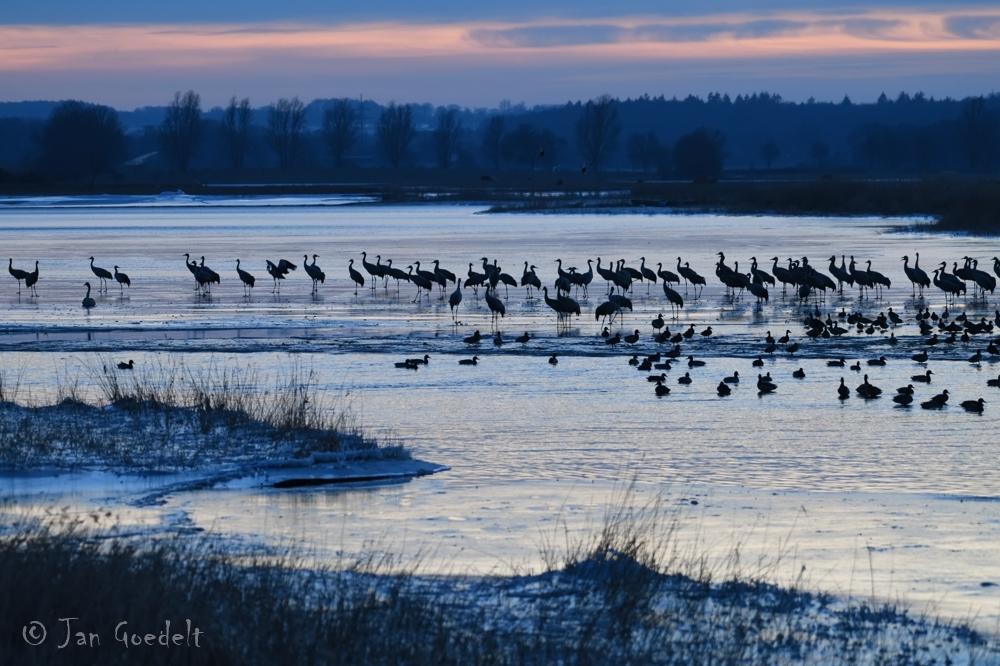 Unterwegs an der winterlichen Ostsee