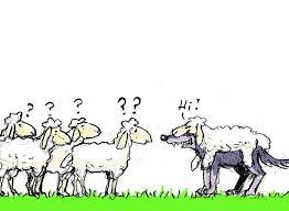 Wölfe im Schafsfell